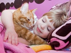 Co znaczy, jeśli śni mi się kot albo pies?