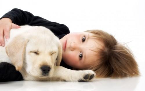 pies i dziecko, fotolia