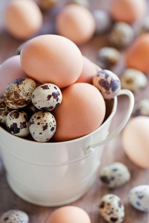 Jajka kurze i jajka przepiórcze