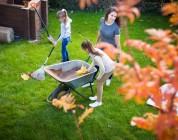 Najważniejsze jesienne prace ogrodowe