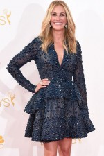 Emmy Awards 2014: Julia Roberts