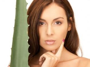 Kosmetyki z roślin dla włosów