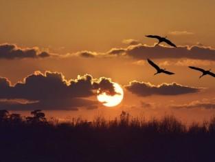 wschody i zachody słońca 2016