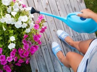 Jak ograniczyć podlewanie ogrodu