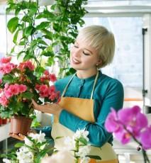 Prawdy i mity o kwiatach doniczkowych