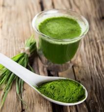 Chlorella w diecie - 7 najważniejszych korzyści