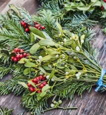 Rośliny na święta i ich znaczenie