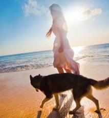 Jak dbać o starego psa