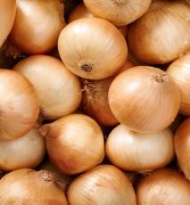 odmiany cebuli, jak kroić cebulę, gatunki cebuli, właściwości cebuli