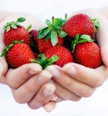 Dieta truskawkowa - zasady efekty i jadłospis