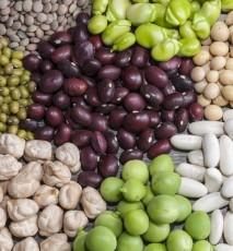 rodzaje warzyw strączkowych, właściwości warzyw strączkowych