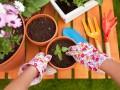 Jakie prace w ogrodzie na wiosnę