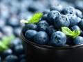 Czarne jagody, borówki - właściwości zdrowotne