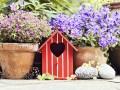 najmocniej pachnące kwiaty, jakie pachnące kwiaty posadzić, jakie kwiaty posadzić żeby pachniało