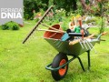 jak zajmować się ogrodem, porady ogrodowe, porady ogrodnika