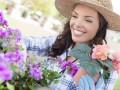 co zrobić w ogrodzie w sierpniu, kalendarz prac ogrodowych na sierpień