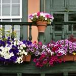 Jak stworzyć piękny balkon?