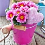 Kwiaty domowe idealne na balkon