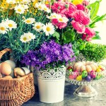 Wielkanocny hit: zielona łączka