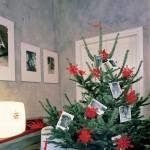 Świąteczne drzewka w nowych szatach