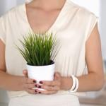 Pytanie dnia: jakie rośliny mogą rosnąć bez światła?