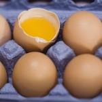 Jajko - zalety żółtka