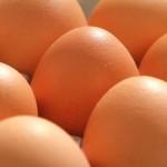 Jajko - zalety skorupki