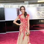 Kracje z czerwonego dywanu - Oscary 2013