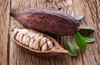 Kakaowiec jako superżywność