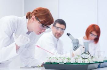 Antybiotyki w żywności - jak sprawdzić, czy są obecne?