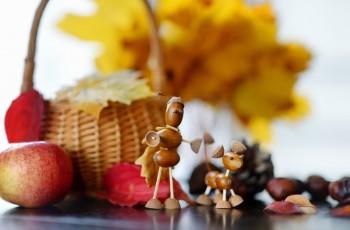 Co można zrobić z kasztanów i żołędzi?