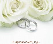 - Fotografia ślubna - Tomasz Lewczuk