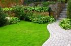 Zakładanie i pielęgnacja trawnika