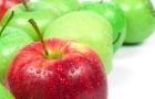 Jabłko na dobranoc