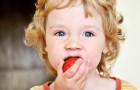 Picie tranu przez dzieci