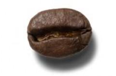 Kawa zmniejsza ryzyko zachorowania na Parkinsona
