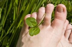 Refleksologia - czyli wróżenie ze stopy