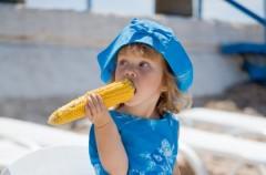 Probiotyk w odpowiedzi na alergię