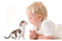 Koty, dziecko i zabobony