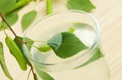 Sok z brzozy - właściwości i zastosowanie