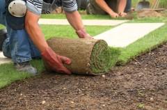 Zakładanie trawnika - sianie nasion i układanie trawy z rolki