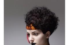Fryzury w stylu Haute couture od Vidal Sassoon - Le Besier zima 2010