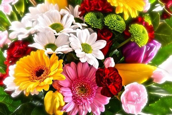 Znalezione obrazy dla zapytania kwiaty dla kobiet