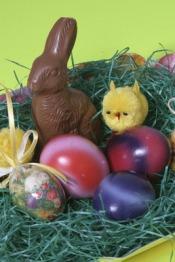 Drogie króliczki Wielkanocne