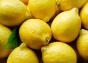 Cytryna i drożdże
