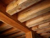 Jak skutecznie zwalczyć szkodniki w starym drewnianym domu?