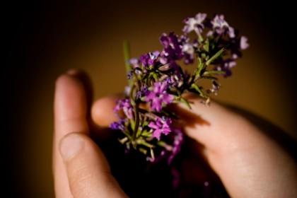 Dyskretny urok kwiatowej przypinki
