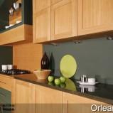 Zdj�cie 13 - Kuchnie Arino w stylu klasycznym