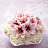 Zdj�cie 22 - Kompozycje kwiatowe
