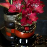 Zdj�cie 26 - Ciekawe kompozycje kwiatowe